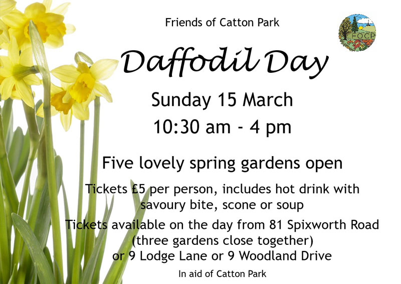 Catton-Park-Daffodil-Day-2020
