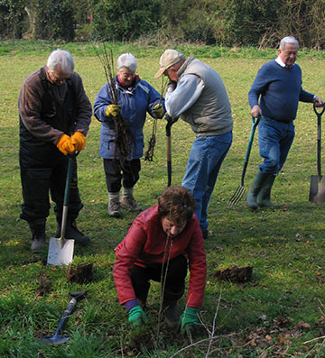 Friends of Catton Park