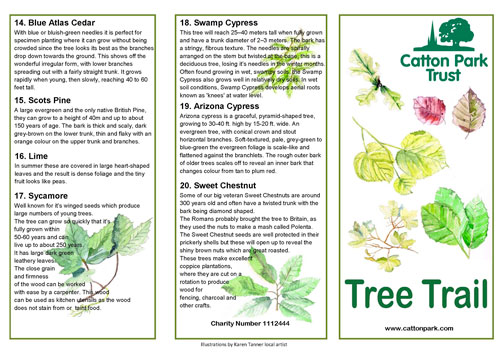 tree trail leaflet page 2
